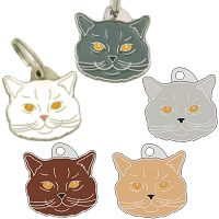 pet tags MjavHov - British Shorthair