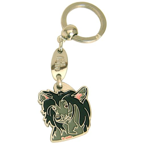 CHINESE CRESTED DOG BLACK