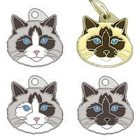 pet tags MjavHov - Ragdoll cat