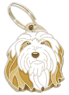 pet tag-BEARDED COLLIE FAWN