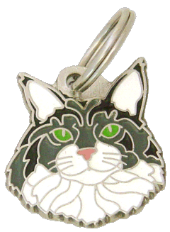 pet tag-Maine Coon