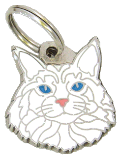 pet tag-Maine Coon white