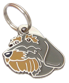 pet tag-DACHSHUND WIRE-HAIRED