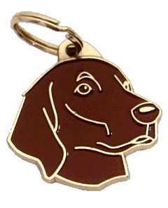 pet tag-FLAT-COATED RETRIEVER BROWN