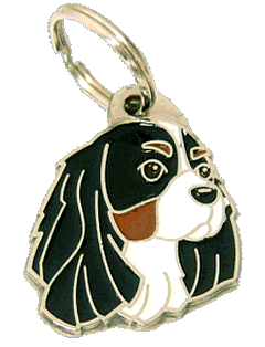 pet tag-CAVALIER KING CHARLES SPANIEL TRICOLOR
